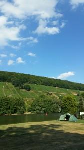 uitzicht op de heuvels langs de Main, vanaf camping Mainruh. Zie je ons tentje staan?